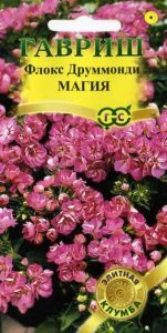 Цветы Флокс Друммонди Магия/Гавриш/цп 8 шт.