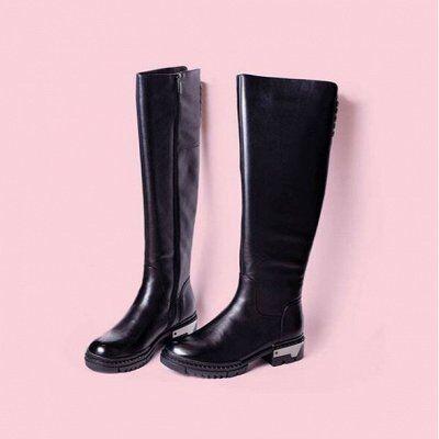 ASTABELLA. Распродажа обуви осень-зима. Раздача за неделю — Женщины. Зимние сапоги. — Осенние