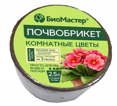 ЭКОСАД: Все для дачи и комнатных растений