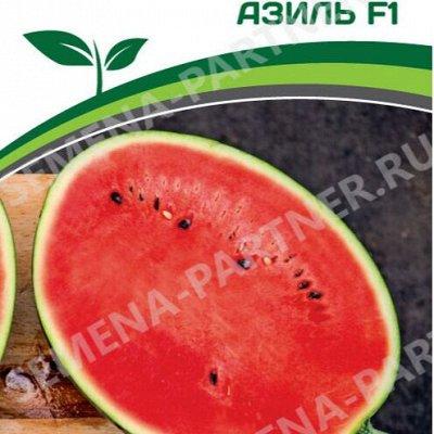 Семена Партнер и Смеко - свободное в счете! В пути! — Кабачки, тыквы, дыни, арбузы — Семена ягод