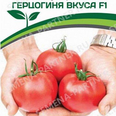 Семена Партнер и Смеко - свободное в счете! В пути! — Томаты для открытого грунта — Семена овощей