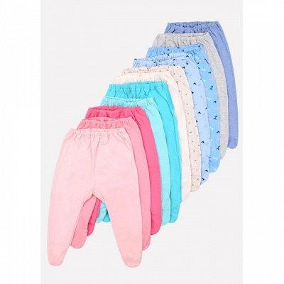 CROCKID - Лучшая одежда для тех кто растет! АКЦИЯ, Выгодно!  — Для новорожденных. Ползунки, брючки, боди — Ползунки