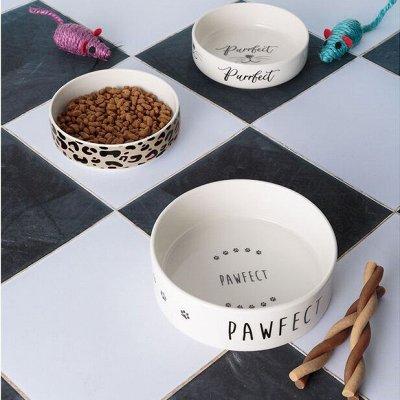 Дизайнерские вещи для дома+кухня — СТИЛЬНЫЕ МИСКИ ДЛЯ СОБАК И КОШЕК — Для животных