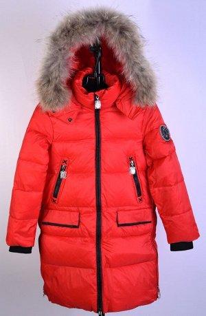 20142 Пальто для девушки Anernuo