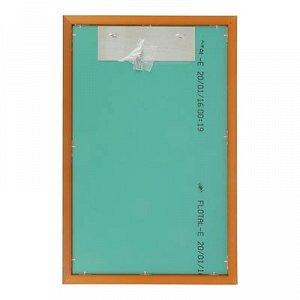 Зеркало «Арабеска», настенное, 45?70 см, рама пластик, 30 мм
