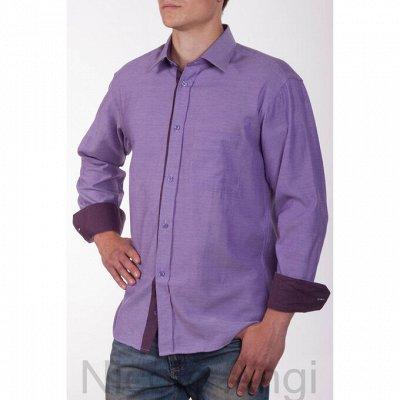 NicoloAngi_Качественно и Супер бюджетно рубашки — Распродажа — Рубашки