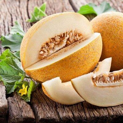 Семена Аltая Цена за 2 пачки — Дыня — Семена овощей