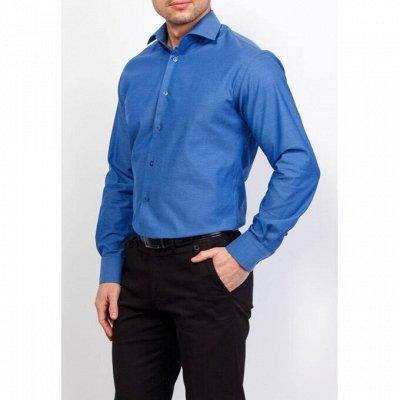 Мужские рубашки, трикотаж, галстуки  — BERTHIER — Длинный рукав
