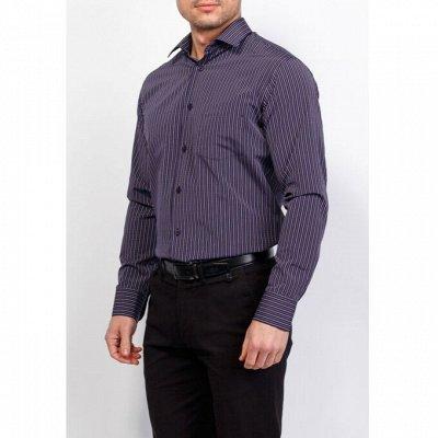 Мужские рубашки, трикотаж, галстуки  — Длинный рукав Casino _1 — Длинный рукав