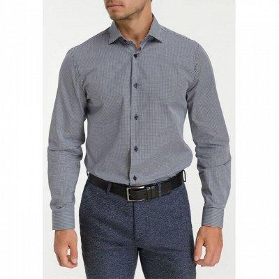 Мужские рубашки, трикотаж, галстуки  — Длинный рукав GREG_1 — Длинный рукав
