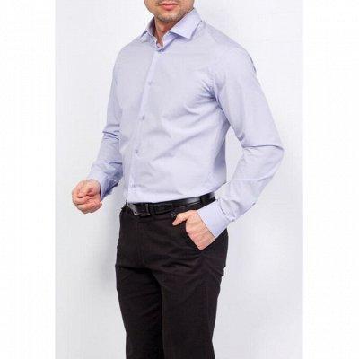 Мужские рубашки, трикотаж, галстуки  — Длинный рукав GREG_2 — Длинный рукав