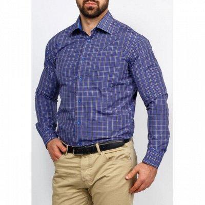 Мужские рубашки, трикотаж, галстуки  — Длинный рукав Casino _2 — Длинный рукав