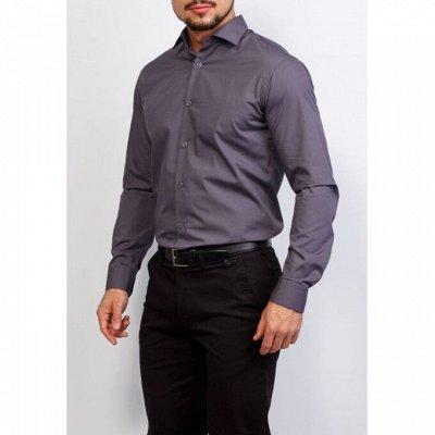 Мужские рубашки, трикотаж, галстуки  — Длинный рукав GREG_4 — Длинный рукав