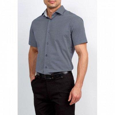 Мужские рубашки, трикотаж, галстуки  — Короткий рукав GREG_2 — Короткий рукав