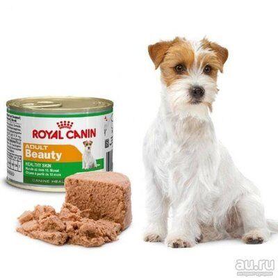 ЗООтовары - 54  — Royal Canin для собак — Корма