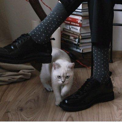 Conte - носки, колготки! Последняя до повышения цен — Носки мужские классические, яркие, укороченные — Носки