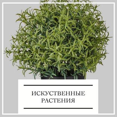 Акция на ДОМАШНИЙ ТЕКСТИЛЬ! Выгодно! Экономия до 74% 🔴 — Искуственные растения — Садовый декор