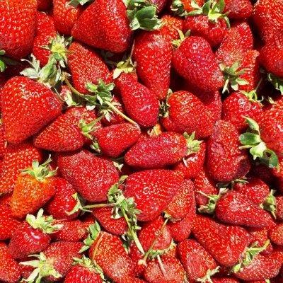 Клубника_Предзаказ на весну — Нейтралы — Плодово-ягодные