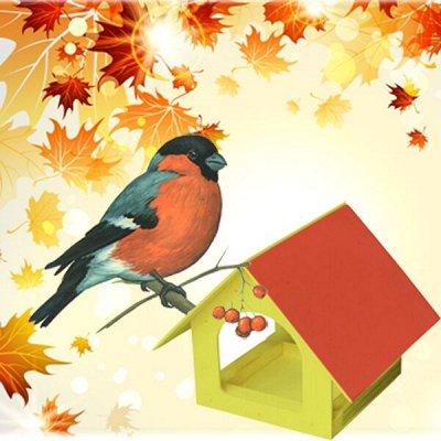 Дачный сезон: готовимся к сезону — Кормушки для птиц и скворечники — Садовый декор
