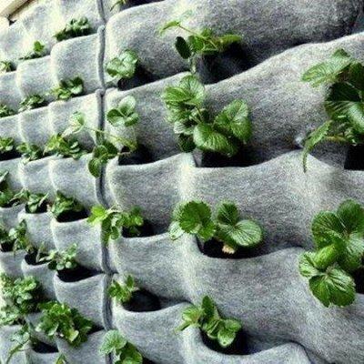 Дачный сезон: готовимся к сезону — Вертикальные грядки — Садовый инвентарь