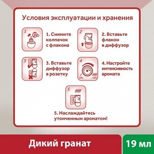 ЭИРВИК Ароматический диффузор Дикий Гранат /19