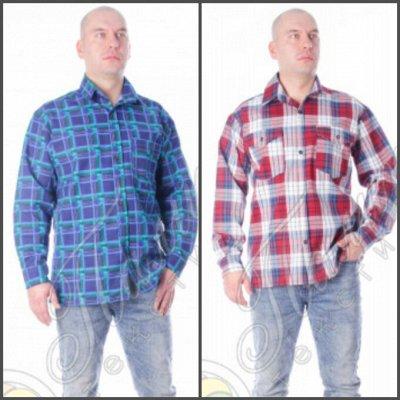 Палитра⭐Трикотаж для всей семьи❗️Спецодежда / Униформа❗️  — Рубашки мужские фланель, бязь — Рубашки