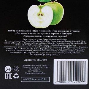 Набор для мальчика «Чемпион!» с ароматом яблока: гель для душа + шампунь