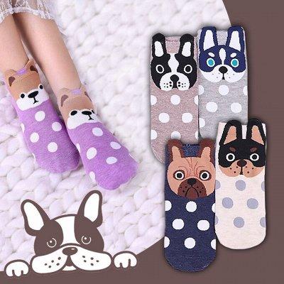 🧦🧦🧦 Носкофф - Любимые Носочки Для Всей Семьи!!! — Носки с животными 🐱🐼🦩🐶🦊 — Носки