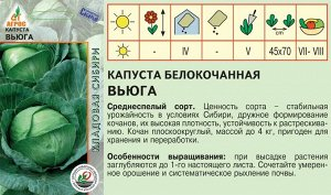 """Капуста б/к""""Вьюга""""0.3г* КС,  Россия,  ср/р"""