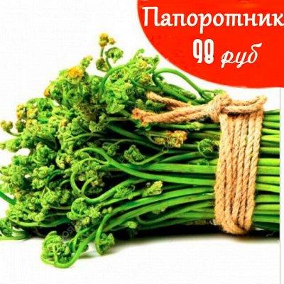 Приморский Вкусный и Полезный Мёд-2020. Консервация — Папоротник — Овощные и грибные