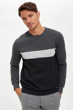 Regular Fit Sweatshirt
