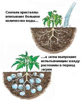 """Гидрогель для домашних растений и декора, полимерный материал, 6 цветов, 13х9х3, """"шарики"""""""