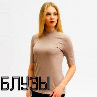🌟Трикотаж для всей семьи! Стильные осенние новинки! 🌟 — Блузки. Короткий рукав — Блузы