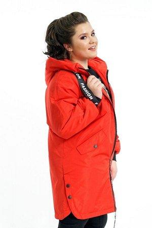 Куртка-4483