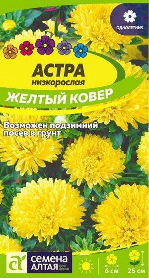Астра Желтый Ковер низкорослая/Сем Алт/цп 0,2 гр.