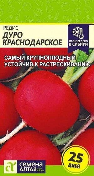 Редис Дуро Краснодарское/Сем Алт/цп 2 гр.