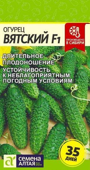 Огурец Вятский F1/Сем Алт/цп 6 шт.