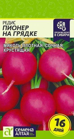 Редис Пионер на Грядке (16 дней)/Сем Алт/цп 2 гр.