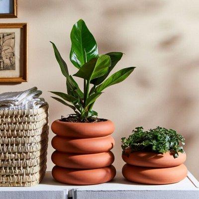 Создайте уют в доме! Товары для ухода за растениями. — Цветочные горшки. Добавьте изюминку в интерьер — Кашпо и горшки