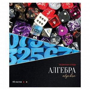 """Тетрадь предметная 48л. ArtSpace """"Сияние мысли"""" - Алгебра, металлизация, ТВИН-лак, конгрев"""