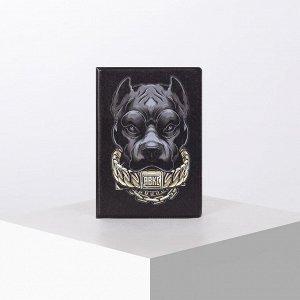 Обложка для паспорта, цвет чёрный 5180169