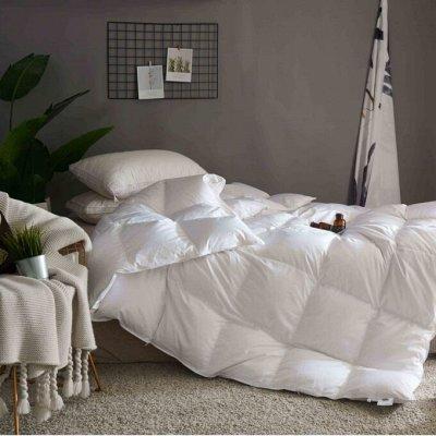 Создайте уют в доме! Товары для ухода за растениями. — Одеяла — Одеяла