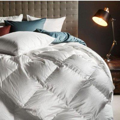 Создайте уют в доме! Товары для ухода за растениями. — Подушки, одеяла, наматрасники — Одеяла и подушки