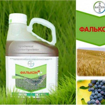 Осмокот - отличное удобрение, пролонгированное действие — Биостимуляторы, средства защиты для растений — Удобрения и агрохимия