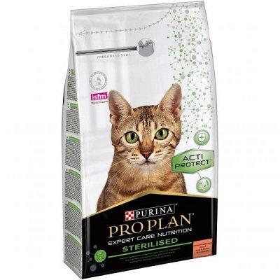 Супер предложение для котов и собак. Цена еще ниже!  — Для котиков.  Скидка 50% (внимание сроки!) — Корма