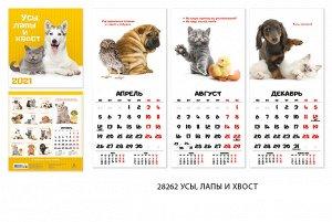 Календарь 2021 перекидной 24х24. Усы, лапы и хвост