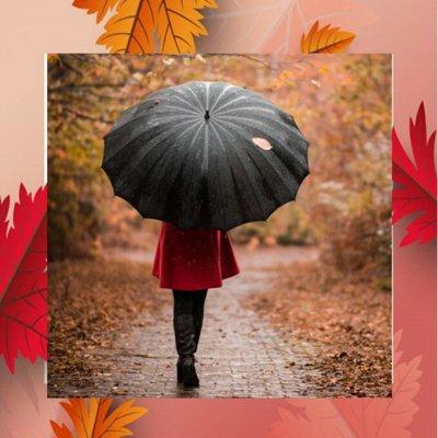 🌈Кожгалантерея по супер цене! — Зонты для всей семьи — Зонты