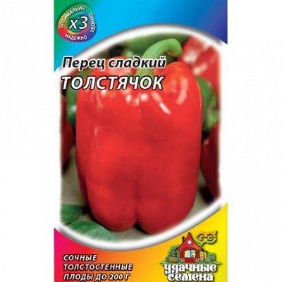 Товары на любой вкус и кошелек Актуальное наличие — УДАЧНЫЕ СЕМЕНА ФОРМАТ х3 ХИТ — Семена овощей
