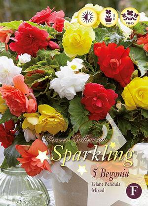 Цветочные луковицы Весна 2021 * Оплата 50/50 — СПАРКЛИНГ - самые модные миксы сезона — Декоративноцветущие