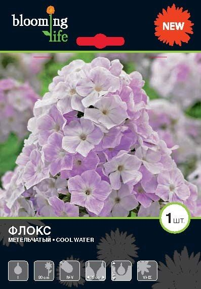 7 цветов! Многолетники! пакетированные !Предзаказ, 30% — ФЛОКСЫ — Декоративноцветущие